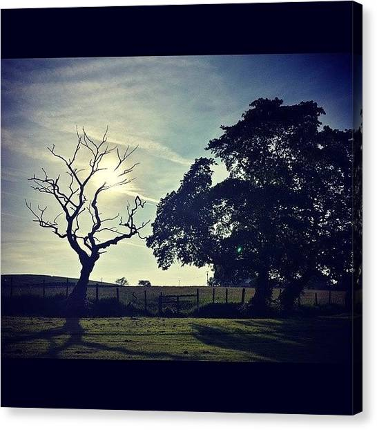 Golfers Canvas Print - #favouritetree #tree #skyawards by David Cockell