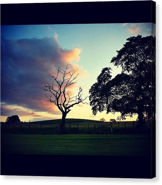 Golfers Canvas Print - #favouritetree #treenecrophilia by David Cockell