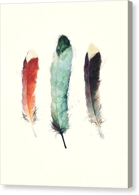 Brown Canvas Print - Feathers by Amy Hamilton