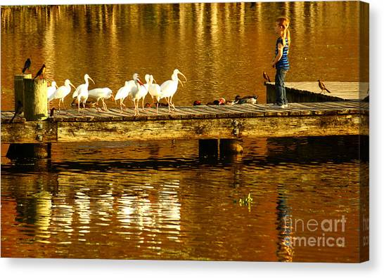 Ibis Canvas Print - Feed Us by Marvin Spates