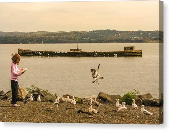 Feeding Birds Canvas Print