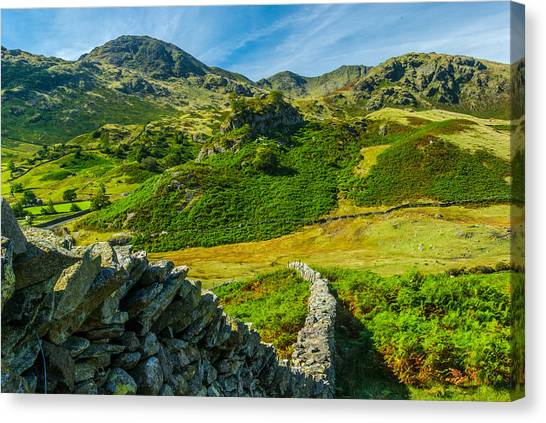 Fell Foot Little Langdale Lake District Canvas Print by David Ross