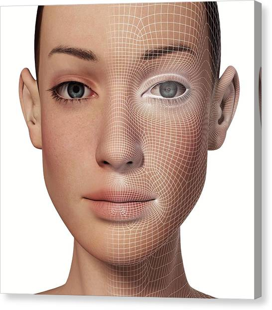 Biometrics Canvas Print - Female Head With Biometric Facial Map by Alfred Pasieka