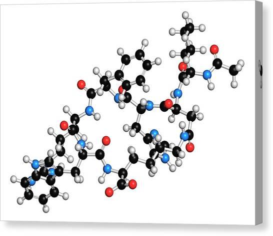 Female Sexual Dysfunction Drug Molecule Canvas Print by Molekuul