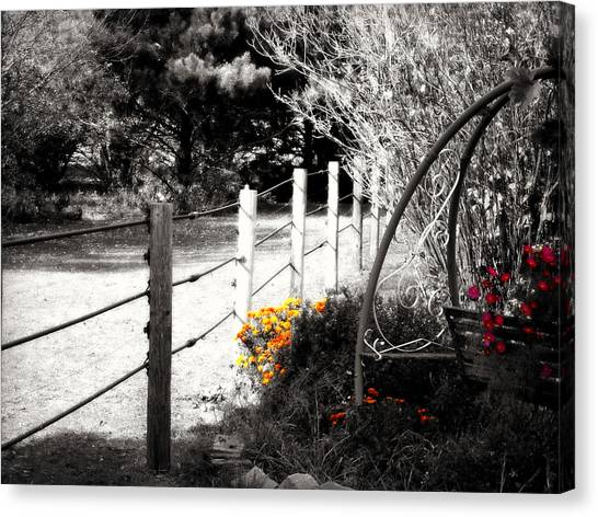Fence Near The Garden Canvas Print