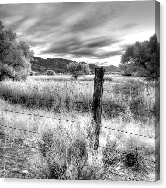 Fence Post In The Meadow Canvas Print