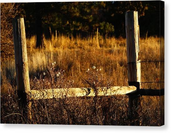 Fence Posts Canvas Print