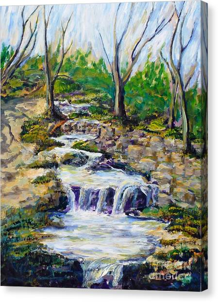 Ferndell Creek Noon  Canvas Print by Randy Sprout