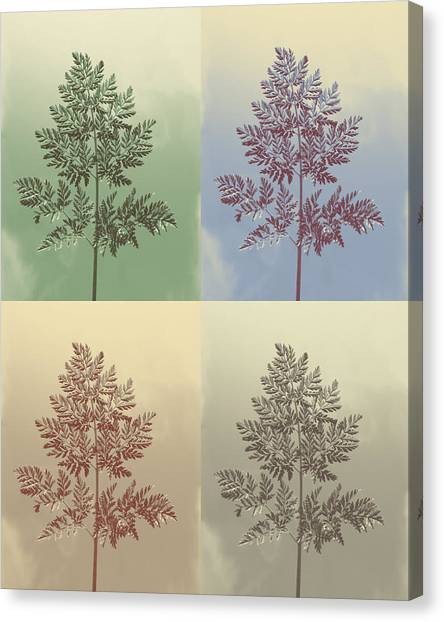 Ferns Times Four Canvas Print by Andrea Dale
