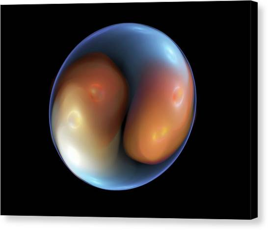 Fertilize Canvas Print - Fertilised Ivf Embryo by Equinox Graphics
