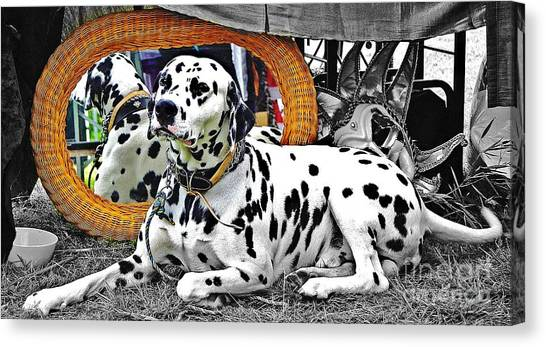 Festival Dog Canvas Print