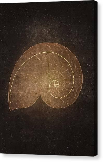 Fibonacci Canvas Print - Fibonacci by Joanna Kleczar