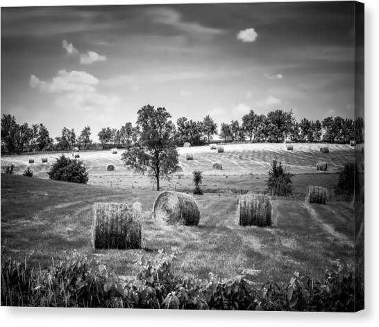 Field Of Hay In Black And White Canvas Print
