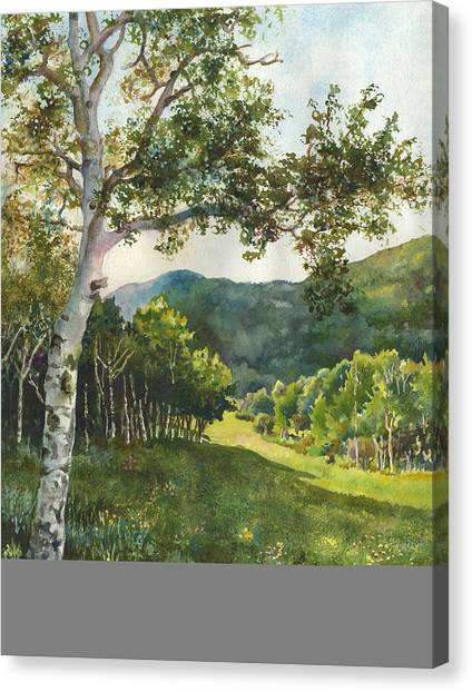 Colorado Canvas Print - Field Of Light At Caribou Ranch by Anne Gifford
