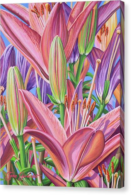 Field Of Lilies Canvas Print