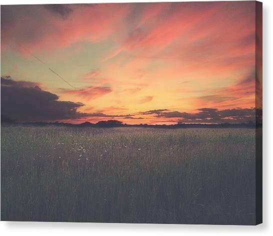 Marsh Grass Canvas Print - Field On Fire by Carrie Ann Grippo-Pike