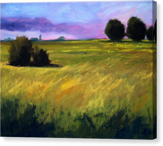 Soothing Canvas Print - Field Textures by Nancy Merkle