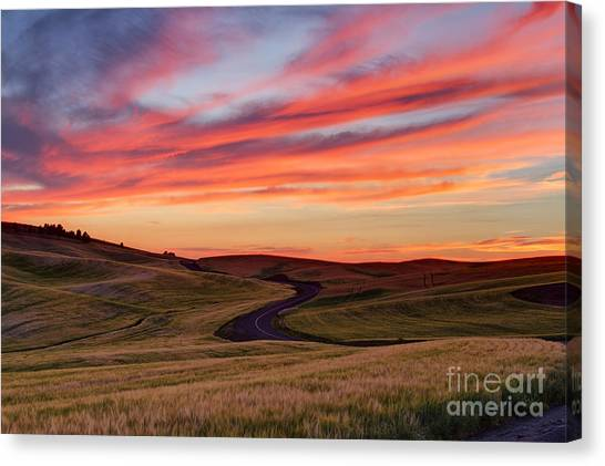 Fields And Dreams Canvas Print