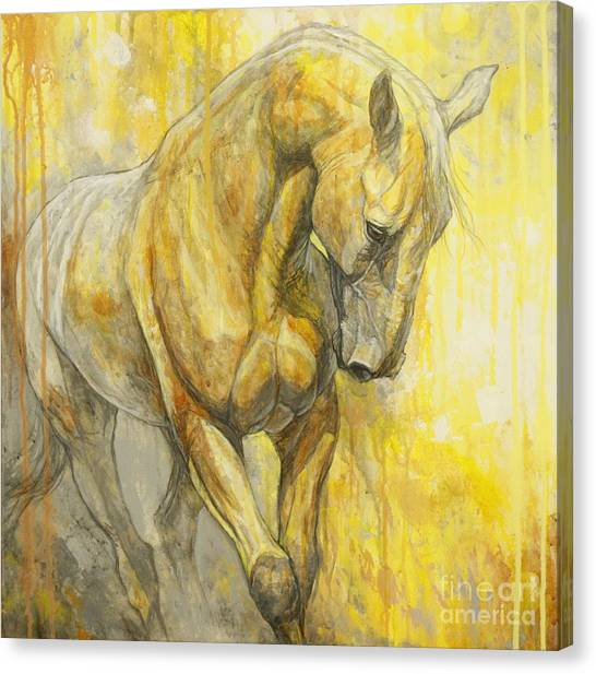 Horses Canvas Print - Fields Of Gold by Silvana Gabudean Dobre