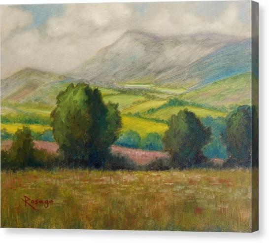 Fields Of Tipperary   Ireland Canvas Print by Bernie Rosage Jr