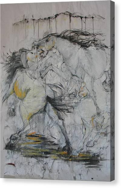 Fighting Horses Canvas Print