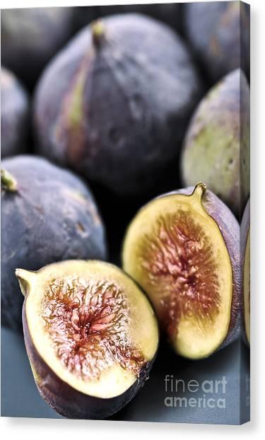 Fruit Canvas Print - Figs by Elena Elisseeva