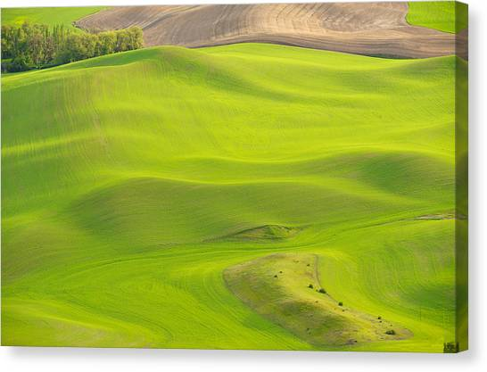 Fileds Of The Palouse Canvas Print