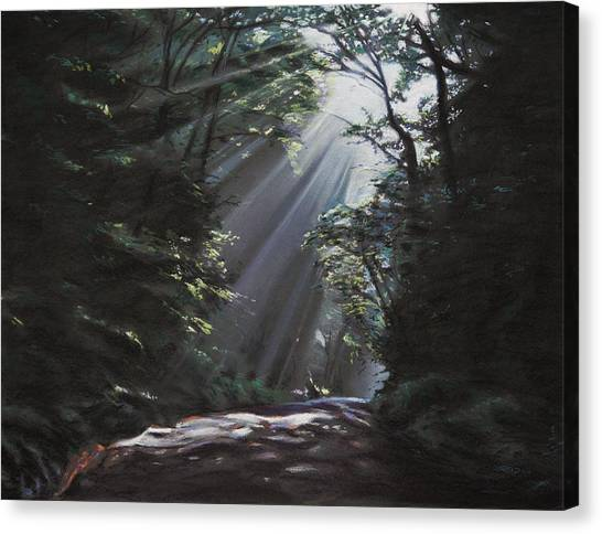 Filtered Light Canvas Print