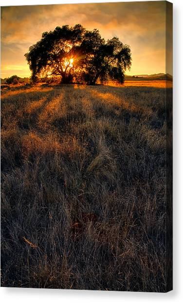 Big Sky Canvas Print - Filtered by Peter Tellone