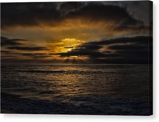 Canvas Print featuring the photograph Fin by Mike Trueblood