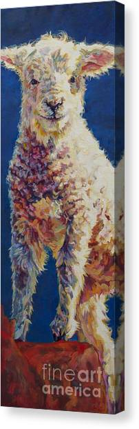 Farm Animal Canvas Print - Fin by Patricia A Griffin