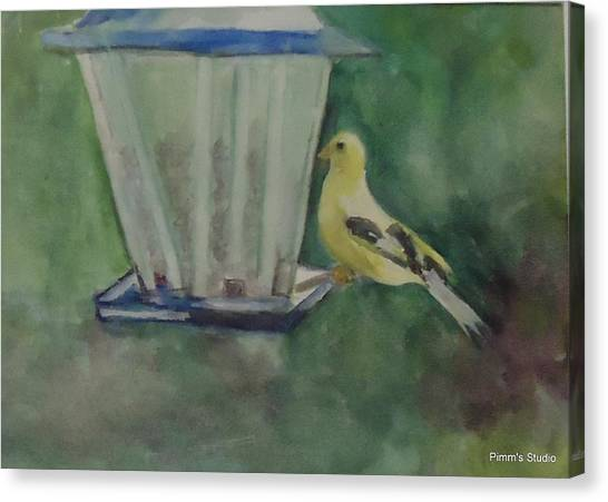 Finch Canvas Print by Betty Pimm