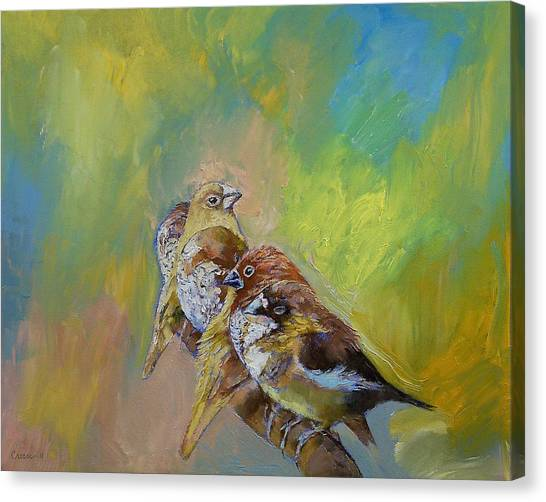 Finches Canvas Print - Finches by Michael Creese
