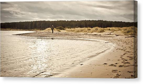 Seagrass Canvas Print - Findhorn Beach by Tom Gowanlock
