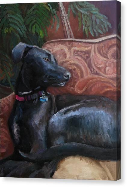 Finley Canvas Print