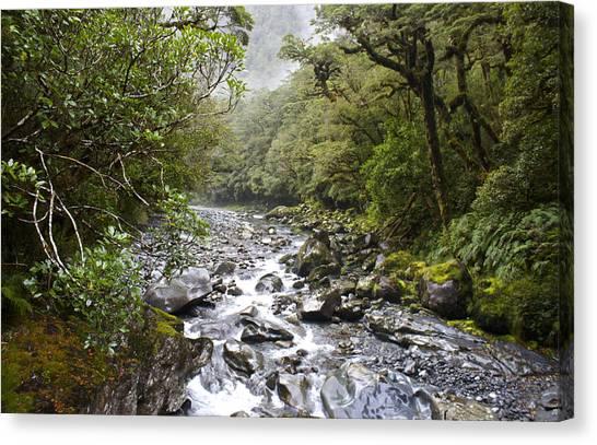 Fiordland National Park New Zealand Canvas Print