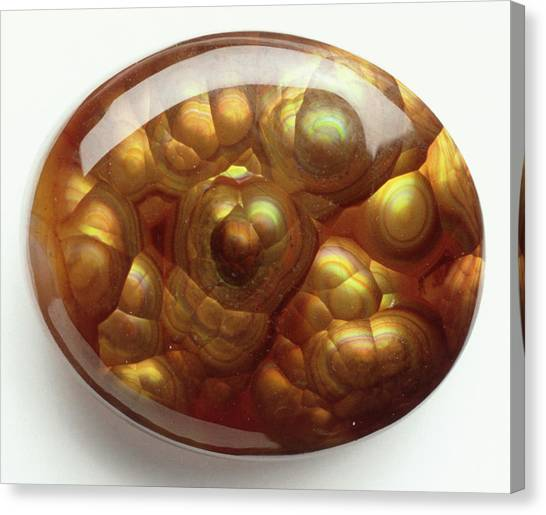 Gemstones Canvas Print - Fire Agate Cabochon by Dorling Kindersley/uig