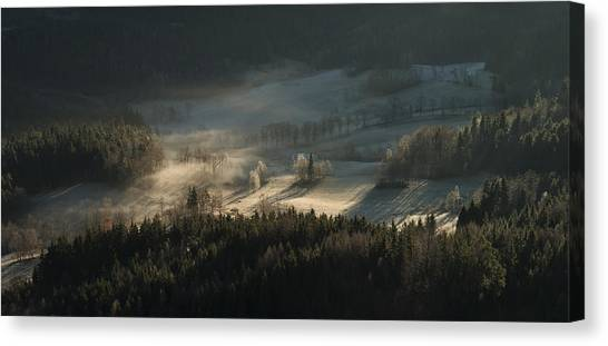Fir Trees Canvas Print - Fire And Ice II by Izabela Laszewska-mitrega/darek Mitr?ga