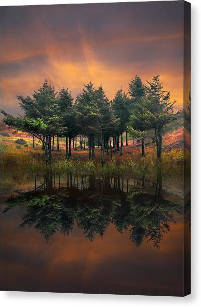 Smokey Mountains Canvas Print - Fire by Debra and Dave Vanderlaan