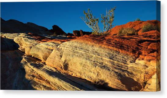 Desert Sunsets Canvas Print - Fire Lines by Chad Dutson