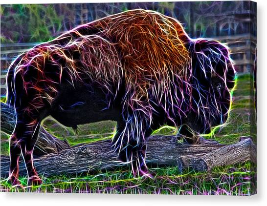Fire Of A Bison  Canvas Print