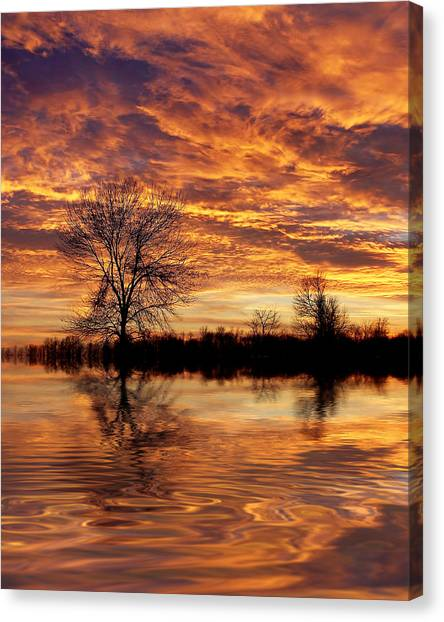 Fire Painters In The Sky Canvas Print