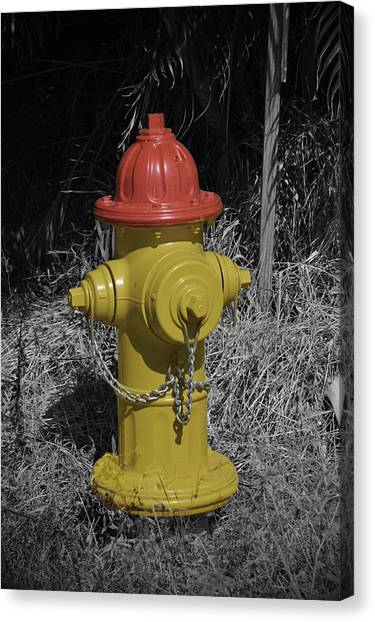 Supplies Canvas Print - Fire Plug by Doug Grey