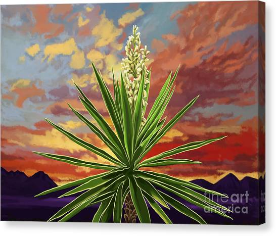 Fire Sky Desert Blooming Yucca Canvas Print