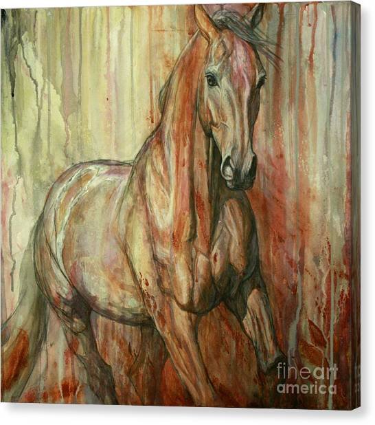 Bay Horse Canvas Print - Fire Within by Silvana Gabudean Dobre