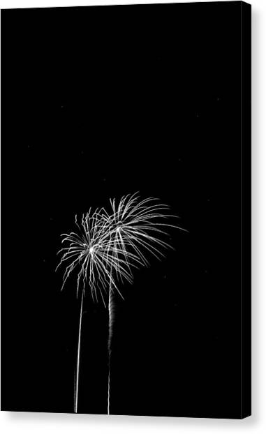 Firework Palm Trees Canvas Print