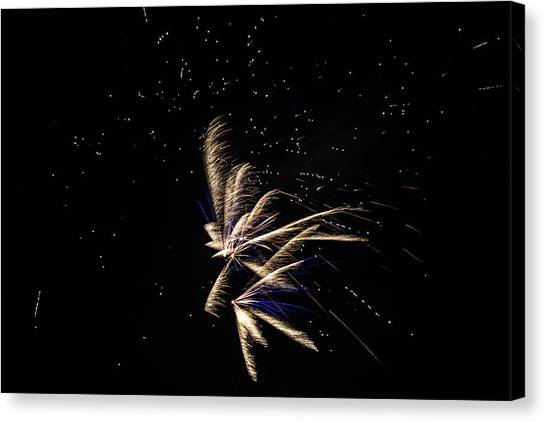 Fireworks - Dragonflies In The Stars Canvas Print