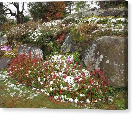 First Autumn Snow Canvas Print