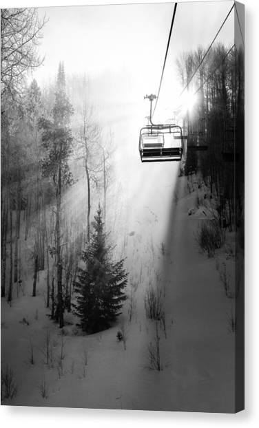 Pine Trees Canvas Print - First Chair by Sean McClay