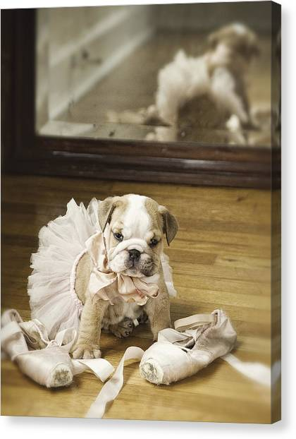 Doggy Canvas Print - First Dance by Lisa Jane